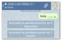 Telegram Aviso de Autodestruccion