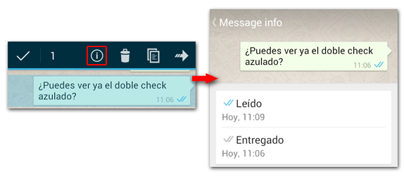 WhatsApp Info Mensaje
